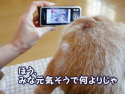 写メ 5 見てよ~><