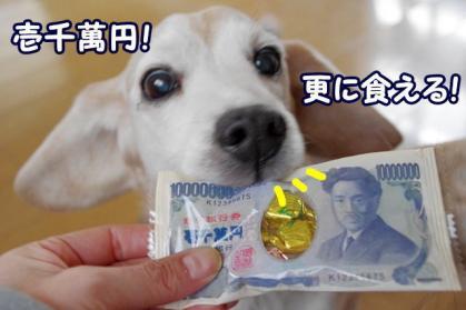 数字 2 壱千萬円