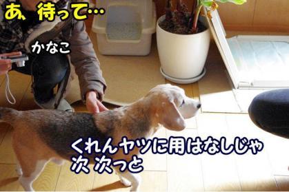 お見舞い 4