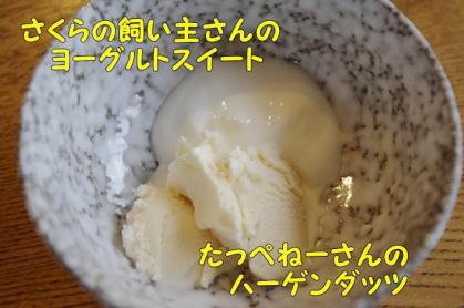 流動食 4 アイスとヨーグルト