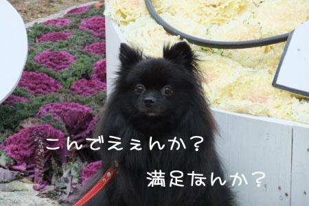 大阪城3のコピー