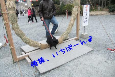 大阪城4のコピー
