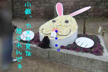 大阪城2のコピー