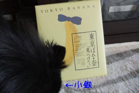 熊熊人日記3のコピー