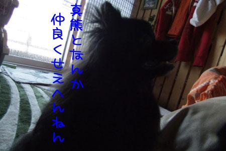 熊熊人日記6のコピー