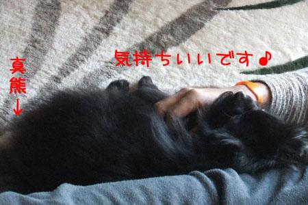 熊熊人日記0203-2のコピー