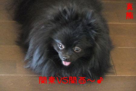 熊熊人日記0203-4のコピー