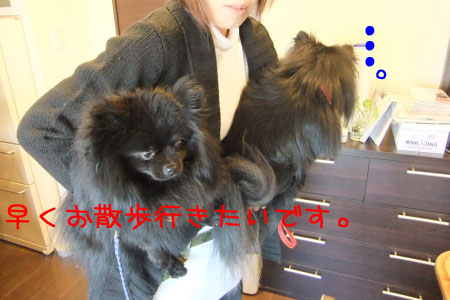 熊熊人日記0203-7のコピー