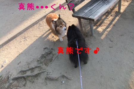 熊熊人日記0203-11のコピー