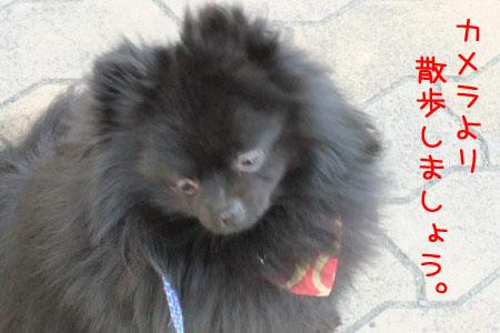 熊熊人日記0203-14のコピー