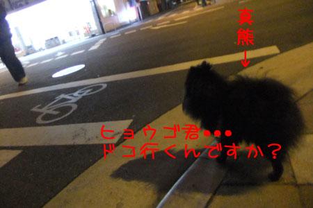 熊熊人日記0204-2のコピー