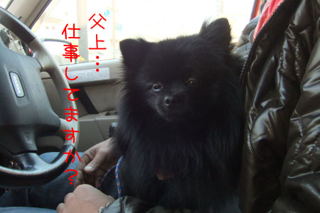 大阪観光2のコピー