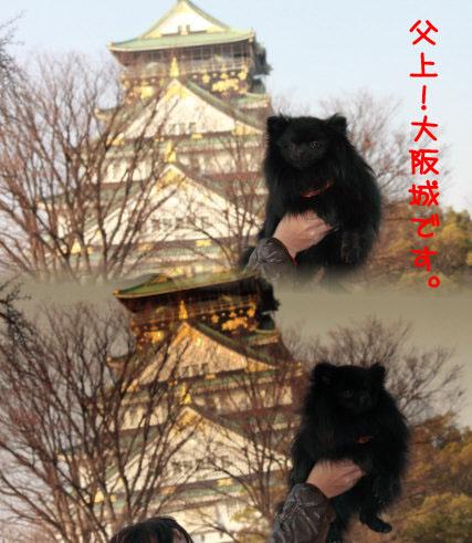 大阪城15