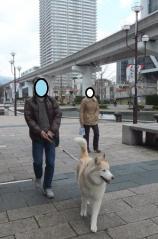 083_20120330232326.jpg