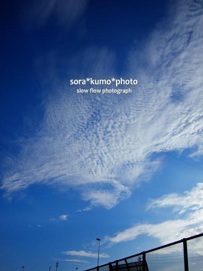 1109sorakumophoto09