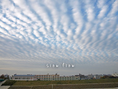うろこ雲06
