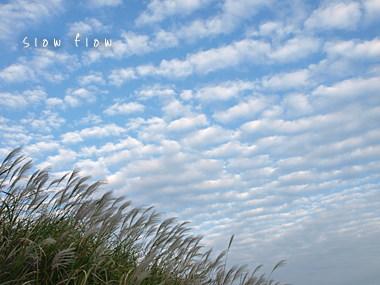 うろこ雲10