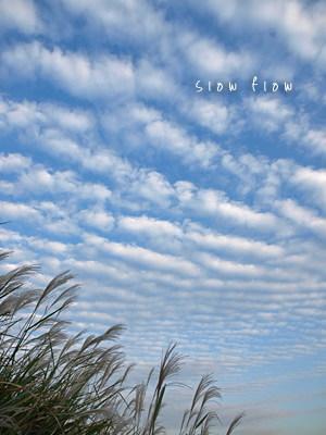 うろこ雲11