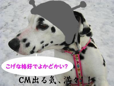 0k-CIMG6780-4.jpg
