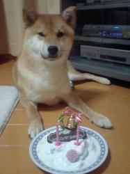 ごはんかケーキか?