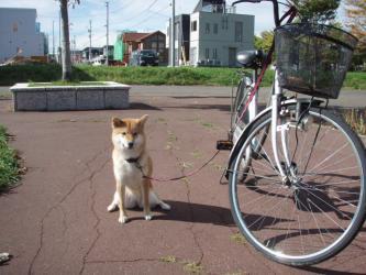 自転車と一緒だよ。