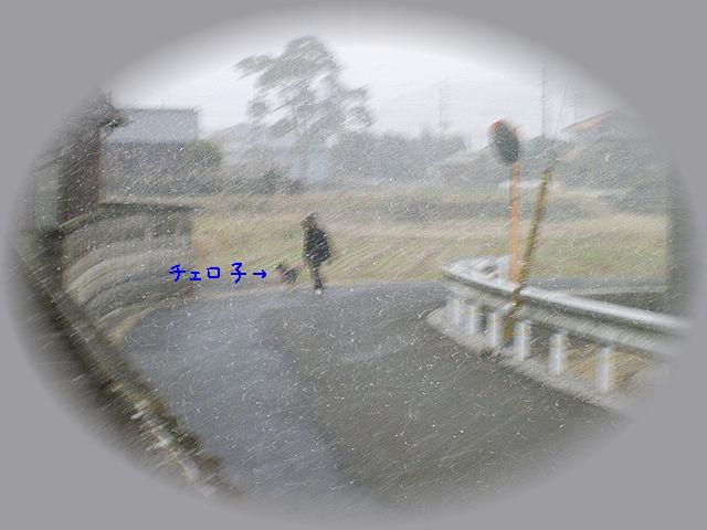 PIC_0088.jpg