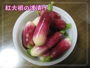 001_20101217163944.jpg