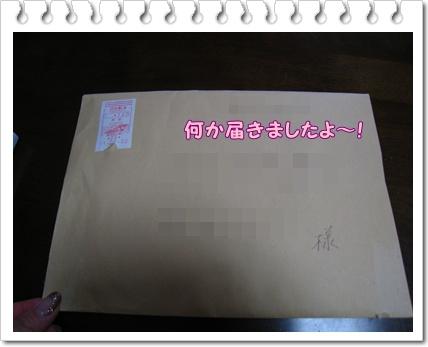 001_20110203224329.jpg