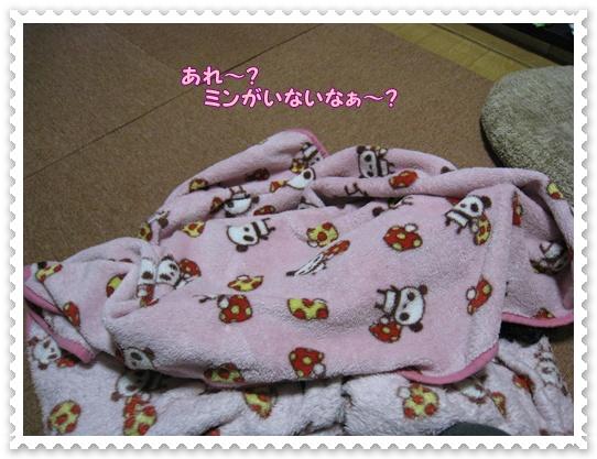 100_20101213193648.jpg
