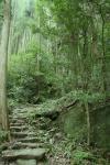 熊野古道最も難所と言われる滝尻王子。