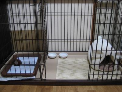 くるみ's ROOM
