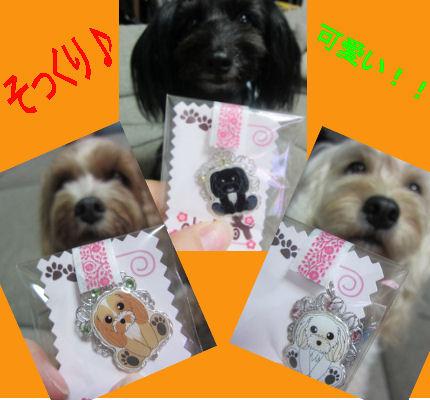 2011.6.22きーほるだー