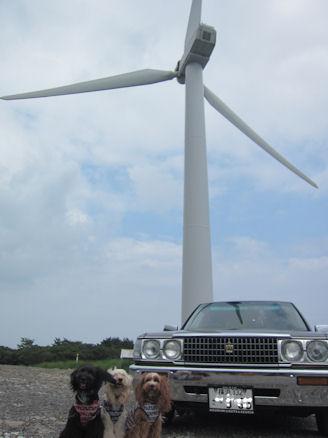 2011.7.2風力