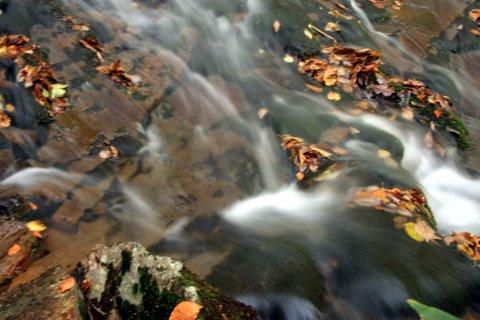 IMG_3106魚止の滝