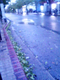 台風18号 091008_0600~001