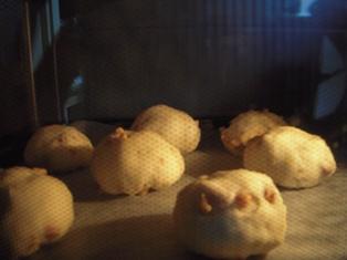 オーブンの中