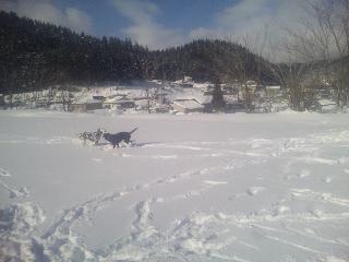 雪遊びちょこくっきー