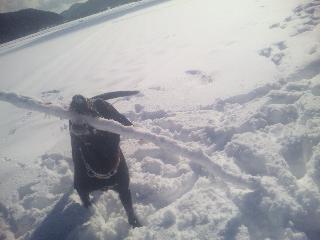 ちょこ雪遊び