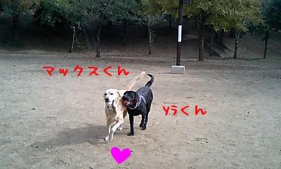 max&sora