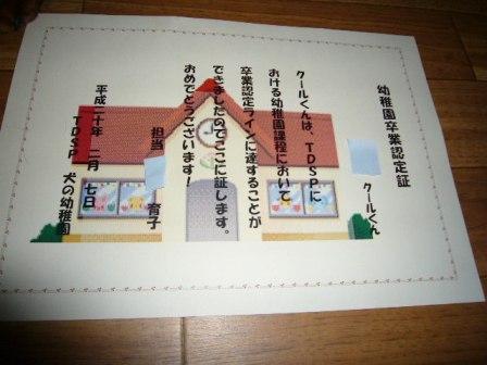 P1070381.jpg