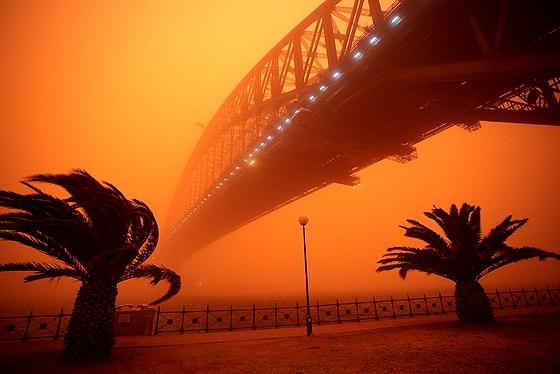 Red_Sydney.jpg