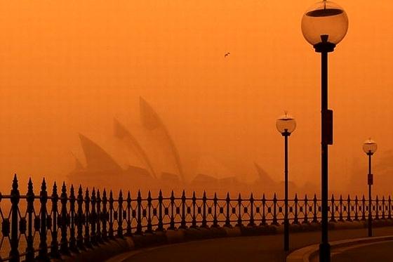 Red_Sydney4.jpg