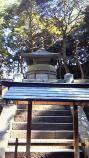 201102011229000.jpg