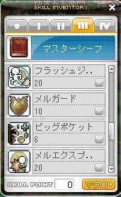Maple101129_3次-2