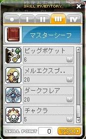 Maple101129_3次-3