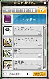 Maple101129_4次-2