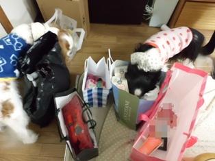 2012_0225~智奈美が帰ってきた0030-1-a