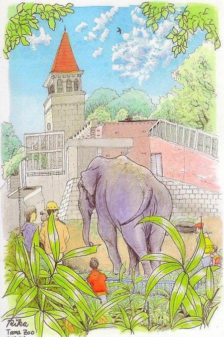 多摩動物公園(象のアヌーラ)