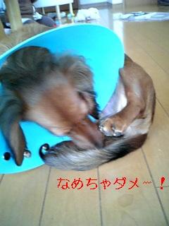 080228_164919_ed.jpg