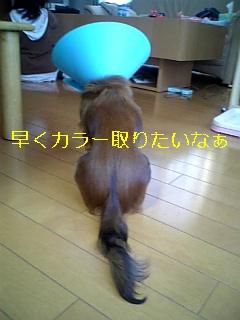 080228_170816_ed.jpg